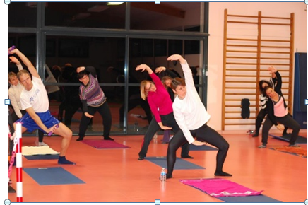 FEPS Gym Step Pilates Muscu